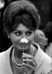 Georges Dudognon : regard sur le cinéma de la Côte d'Azur - Photographies 1949-1966