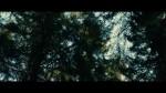 Dans la forêt - bande annonce