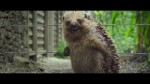 Pierre Lapin - bande annonce