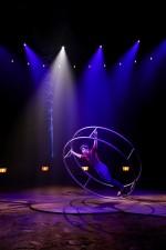 Cirque national Alexis Gruss - Origines