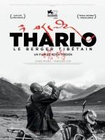 Tharlo, le berger tibétain