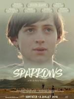 Sparrows - Affiche