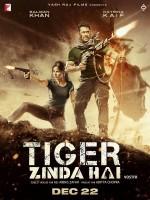 Tiger Zinda Hai - Affiche