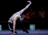 Israel Galván, Ariane Ascaride, À tort et à raison, Cyrano... Les spectacles à voir