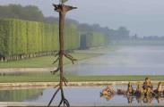 Giuseppe Penone jardine à Versailles