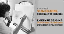 EXPOSITION 'VIJA CELMINS L'OEUVRE DESSINE' AU CENTRE POMPIDOU