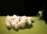 Le loup qui voulait être un mouton