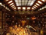 Museum National d'Histoire Naturelle - Galerie de l'Evolution