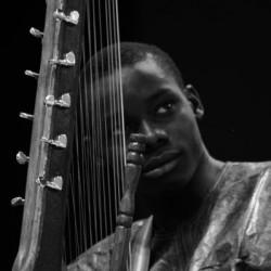 Le fils de Toumani - Jazz à Vienne