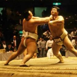 Festival des arts martiaux - Lutte Sumo